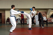 Performanţe la TAEKWON-DO