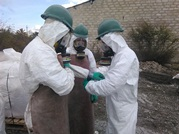 More Pesticides Evacuated from the South of Moldova