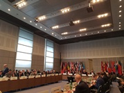 Ministry of Defense at the OSCE Annual Implementation Assessment Meeting